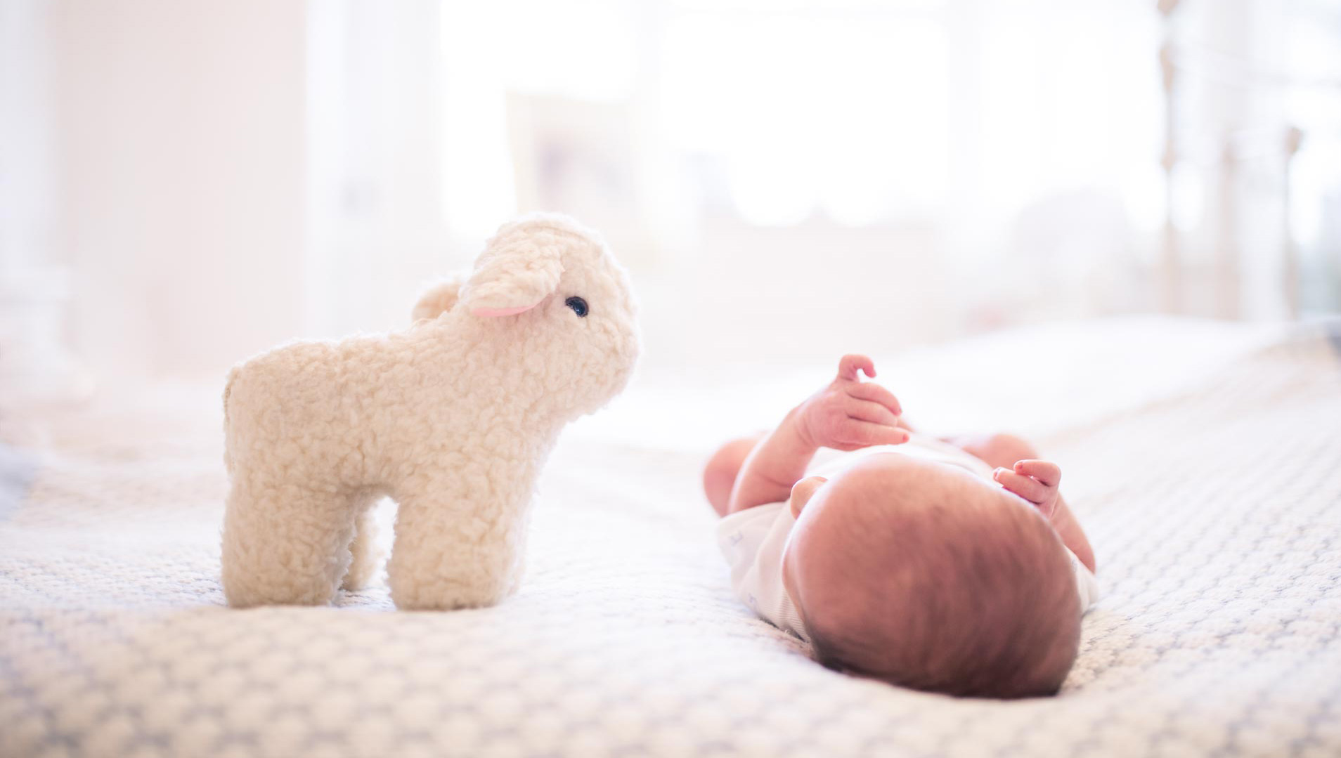 An image of a newborn baby lying on a bed with a soft toy - newborn shoot by Sam of Hansford Carter, a Kent-based wedding photographer